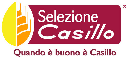 LOGO-CASILLO.jpg